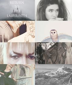 Return to the Labyrinth-  oh if only this was real