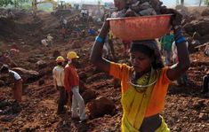 India: Forest tribe will die out if evicted from ancestral land