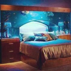 Fish tank... want it and I have a feeling so will you