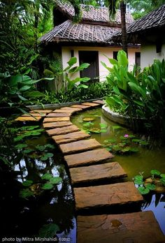 Beautiful stone path across a koi pond in a japanese garden Garden Paths, Garden Landscaping, Landscaping Ideas, Herb Garden, Garden Pond, Walkway Garden, Natural Landscaping, Garden Entrance, Asian Garden