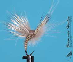 Another angle of the emerger from Bram van Houten