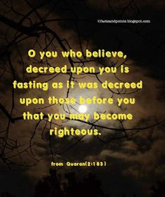 Facts And Points │Knowledge Beyond Vision Ramzan Wishes, Mubarak Ramadan, Believe, Knowledge, Facts, Happy, Quotes, Quotations, Qoutes