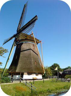 One sunny day near Utrecht