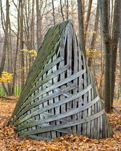 Martin Puryear Michigan Legacy Art Park