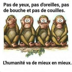 Celle ci n'est pas mal non plus lol ! A voir absolument 🤣! Funny Hunting Pics, Hunting Humor, Eye Quotes, Funny Quotes, French Expressions, Mr Wonderful, Quote Citation, Keep Calm Quotes, English Vocabulary Words