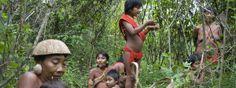 """""""A los Yanomamis nos están matando"""""""