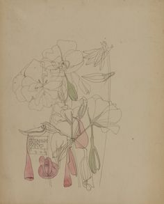 60 Trendy Ideas For Art Nouveau Floral Illustration Charles Rennie Mackintosh Charles Rennie Mackintosh, Botanical Drawings, Botanical Prints, Cute Drawings, Drawing Sketches, Art Nouveau, Art Design, Modern Design, Art Graphique