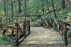 Biltmore bridge.  Walking the grounds is so wonderfully relaxing.