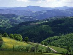 Entre Lyon et Saint-Etienne, la région Rhône-Alpes vous offre une respiration fraîcheur : le massif du Pilat, Parc naturel régional. Ne manquez pas de profitez de ce territoire remarquable pour vivre une expérience authentique en pleine symbiose avec la nature. Read more at http://www.sejour-touristique.com/vacances-en-france/sites-classes/parc-naturel-regional-de-france/parc-naturel-regional-du-pilat-42-69.html#xSasHs6BFCJfbcak.99