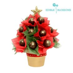 Poppin' around the christmas tree | Cake pop xmas tree and would make for the perfect centerpiece for christmas parties