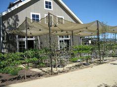 The Farmstead Restaurant in Napa