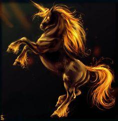 Fond d'écran d'un cheval au galop sur du sable  Wallpaper gratuit