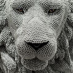 Courtney Timmerman uses thousands of air rifle BBS and creates impressive taxidermy heads of wild animals.