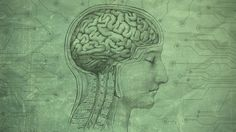 """What Your """"Working Memory"""" Does (and How to Give It a Tune-Up)"""