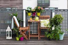 Neutral wooden furniture can be paired with different accessories to suit your décor and mood. Find out how to 'Get the Look' at Woodies. Wooden Furniture, New Furniture, Outdoor Furniture, Outdoor Sofa, Outdoor Living, Outdoor Decor, Beer Garden, Outdoor Entertaining, Get The Look