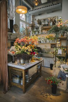 To the waters and the wild — having my own flower shop, watering plants,. Flower Shop Decor, Flower Shop Design, Flower Shop Interiors, Design Light, Applis Photo, Flower Studio, Flower Market, Flower Shops, Garden Shop