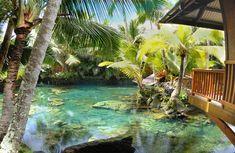 Shangri-la: It's Paradise on Earth in Pahoa, Hawaii - tropical garden ideas Hawaii Honeymoon, Hawaii Vacation, Hawaii Travel, Pahoa Hawaii, Hawaii Homes, Paradise On Earth, Shangri La, Tropical Garden, Big Island
