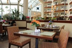 Landings Bistro at the DoubleTree by Hilton Orlando Airport Hotel Orlando Airport, Airport Hotel, Airport Shuttle, Hotel Reviews, Table Decorations, Furniture, Home Decor, Decoration Home, Room Decor