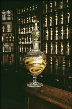 """Eau de vie de serpent"", a strong alcohol with a snake in the jar, originally used for medicine."