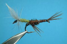 Let's talk about BWO patterns | Oregon Archive | Westfly Bulletin Board