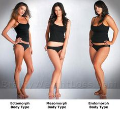 "When you want to lose the extra pounds through controlled nutrition and exercising, your question ""What is my body type?"" is answered by Dr. Sheldon's somatotypes: Endomorph, Mesomorph, Ectomorph. THIS IS SO TRUE!!"