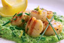 Seared scallops with minted pea puree – Recipes – Slimming World Easy Slimming World Recipes, Slimming World Free, Healthy Recipes For Weight Loss, Scallop Recipes, Pureed Food Recipes, Fish Dishes, Fish And Seafood, Food Menu
