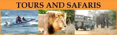 SpectAfrica – For all to enjoy an amazing spectafrica adventue. Beach Accommodation, Wildlife Conservation, African Safari, Africa Travel, Adventure Travel, Tourism, Travel Photography, National Parks, Amazing