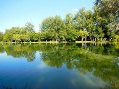 Découvrez les vallons du Gers lors d'une randonnée ou sur le chemin de Saint-Jacques de Compostelle, taquiner le poisson sur l'un des deux plans d'eau (2ème catégorie), faire une partie de tennis ou de pétanque, voilà un panel d'activités que vous pourrez y pratiquer. Destinations, Lacs, Panel, Golf Courses, Tennis, River, Nature, Outdoor, Places To Visit