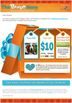 iPhone 5 Email Marketing | Email Marketing Samples | Pinterest ...