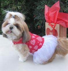 Dog Dress Harness Valentine Red Hearts Flowers.