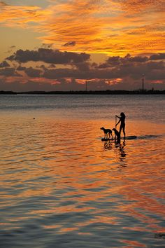 Something I'm going to do this summer: Paddleboarding!  Paddleboard sunset by mikengel, via Flickr