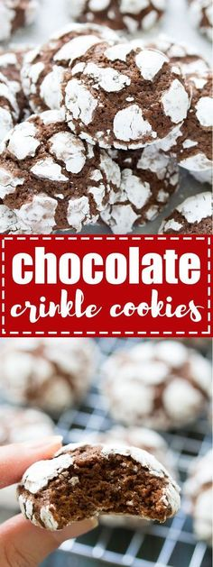 Fudgy Chocolate Crinkle Cookies are a Christmas cookie favorite! With a powdered sugar coating, this easy chocolate crinkles recipe is perfect for holiday gift baskets! #chocolatecookies #christmascookies #holidayrecipes #baking