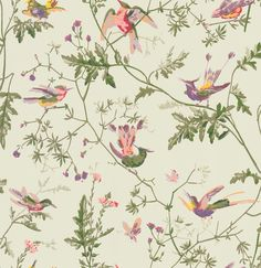 Cole and Son Archive Anthology Hummingbirds