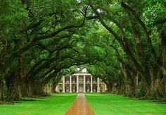 Oak Alley Plantation-not in New Orleans, but worth the quick drive.  Be sure to release your inner southernbelle and have a mint julip on the veranda.
