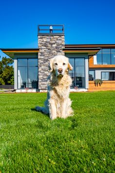 Featuring Eldorado Stone, Cedar cladding and a massive North West facing deck, this Mandeville home is perfect for this pupper.