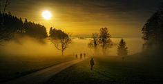 mysty walk by Peter Meier on 500px