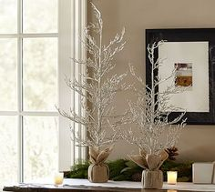 Champagne Glitter Trees #potterybarn - time to wander the property and see if I have any branches symmetrical enough to do this.
