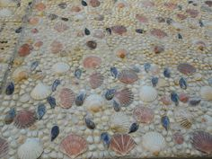 Wall of House coated in shells.  loving this wonder if i could use this in front of sauma