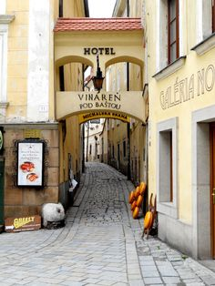 Bratislava, Slovakia Danube River Cruise, European River Cruises, Bratislava Slovakia, Vienna, Budapest, Poland, Facade, Around The Worlds, Explore