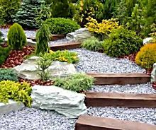 Landscaping Tips That Could Save You Money