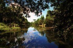 Na imagem, Parque da Barreirinha. Foto: Cesar Brustolin/SMCS(arquivo)