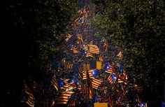 """People wave """"estelada"""" flags, that symbolize Catalonia's independence, during a demonstration calling for the independence of Catalonia in Barcelona, Spain, Thursday, Sept 11, 2014. A week before Scotland votes on whether to break away from the United Kingdom, separatists in northeastern Spain were trying to convince hundreds of thousands to protest across Catalonia to demand a secession sentiment vote that the central government in Madrid insists would be illegal. (AP Photo/Emilio…"""