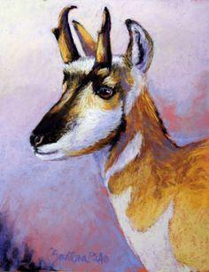 """Pronghorn"" by Carol Santora Pastel Art, Animal Art, Drawings, Pastel Painting, Moose Art, Carole, Image, Painting, Art"