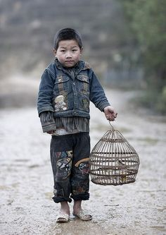 Hmong child, Vietnam