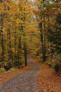 long and winding road, Michigan