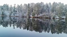 26. Tiia Rengo captured some of Minnesota's first snow with this reflective shot of the wintery trees.