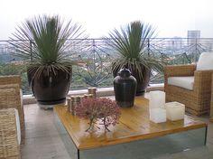 Vasos em cerâmica vietnamita com dasilírios em varanda coberta. Projeto de Marcelo Faisal
