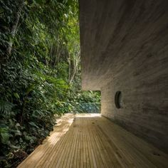 A Brazilian rainforest house, a spiralling university building in Tenerife and a bulbous blue drawing studio are among the 343 projects shortlisted for awards at the World Architecture Festival in Berlin this November.
