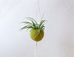 Macrame hanging planter / Olive green Felt by theYarnKitchen