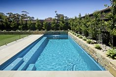 Simple Backyard Swimming Pool Designs with Glass Pool Fencing and Stone Decorations with Plants on Poolside Plus Dark Grey Wooden Fence Panels for Privacy - Swimming Pool Design as Modern Home Additional Feature – VizDecor Glass Pool Fencing, Pool Fence, Backyard Fences, Fenced In Yard, Fence Garden, Swimming Pools Backyard, Swimming Pool Designs, Pool Landscaping, Langer Pool